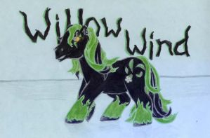 Pony Art Exchange: Willow Wind by crazynina