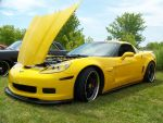 Yellow Fever by PhotoDrive
