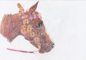 Horse With Flowers by Moondancer3