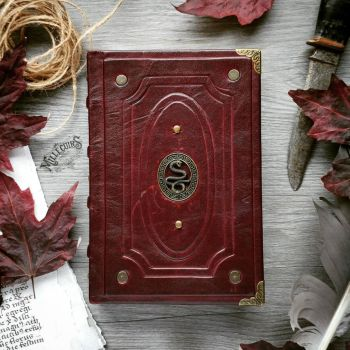 Dark red book of snakes by MilleCuirs