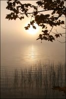 Morning mist - Oct 2008 by pearwood