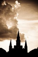 The Saint Louis Cathedral: New Orleans by SparkVillage
