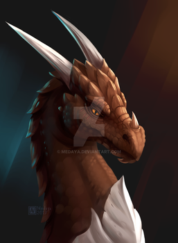 COMMISSION: Mazrogal by Medaya