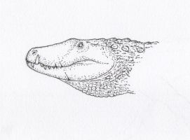 Barianasuchus by Animalistic-Artworks