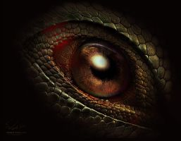 Dragon s eye by Vitaly-Sokol