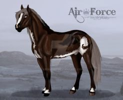 BKC Air Force by abosz007