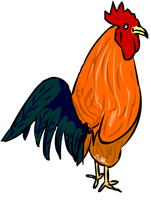 rooster by HuskyProduction