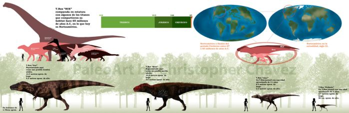 Lamina comparativa T.Rex. by Christopher252