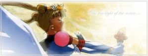 Banner- Sailor Moon by Aki-Moonblade
