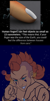 Did you know? by Titan-Men