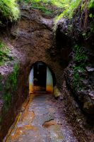 Hidden entrance by forgottenson1