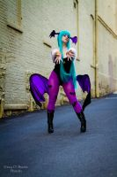 Morrigan 2 by Lily-in-Leather