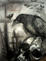 Ravens and crows will eat us by elicenia