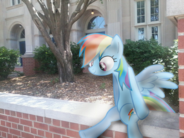 Rainbow Dash Sitting in Front of My School by BCMmultimedia