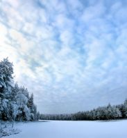 winter view by KariLiimatainen