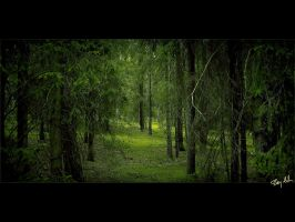 Green Forest by Bay-TEK