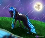 When the stars fall down ... by Seelentraeumerin