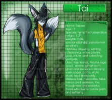 Tai - my fursona by war-armor
