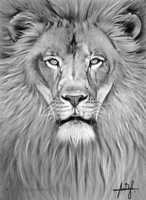 The Lion, finished!! by LexDizih