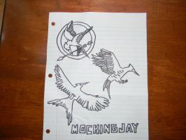 The Hunger Games birds by ToInfinityAndBey0nd