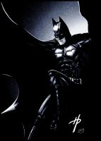 The Dark Knight Rises by Hal-2012