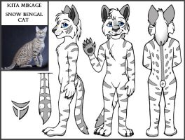 Character Sheet - Mikage by arazia