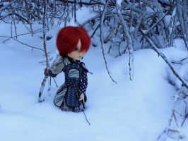 Red in Snow by ShigatsuPL
