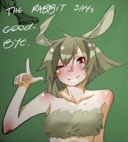 The year of the rabbit ends. by JinxBiss