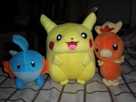 More Pokemon Plushies FOR SALE by HinataFox790