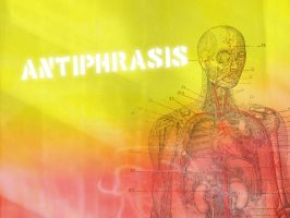 Antiphrasis - Anatomy by abattoir