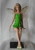 More of Tinkerbell by MarynaS