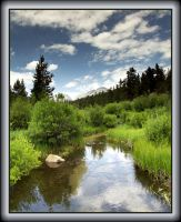 Creek in the Rockies by papatheo