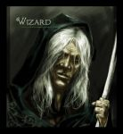 Wizard by caananwhite