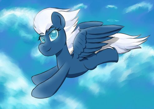 Flying in the sky by SanzoLS