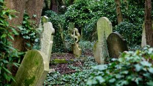 Highgate Cementary by LunaFeles