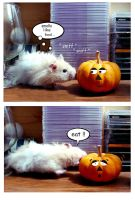 Hamster Baby Pumpkin Eater by buildingclimber
