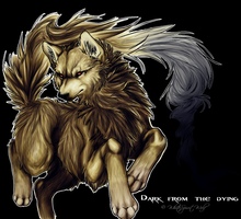 Dark From The Dying by WhiteSpiritWolf