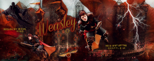 Weasley is our King by VaLeNtInE-DeViAnT