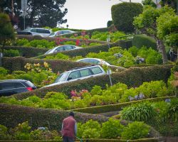 Lombard Street by neomagic