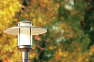 Lamplight by 2cool2care