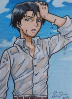 Levi ACEO card by LadyNin-Chan