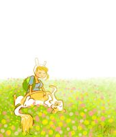 Fionna and Cake by Vilva
