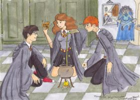 Making the Polyjuice Potion by LaurenMissing