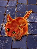 The littlest ginger pussycat by MODDEYDOO