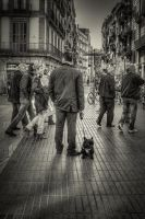 Dog In the Ramblas by Fogherty