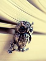 Le Hibou by Somebody--else
