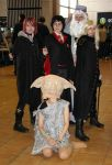 AS'11 Harry Potter group 6 by Hermy46