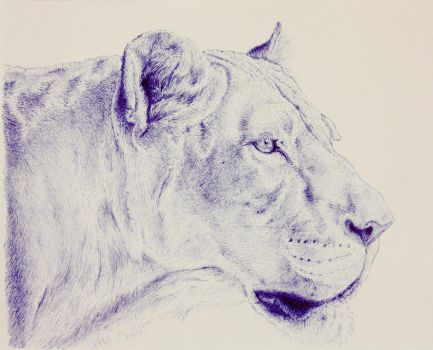 Ballpoint Pen Lioness by Arahn-Lion