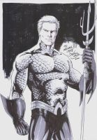 Aquaman Commission NYCC 2010 by danielhdr