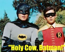 holy cow batman by carchieee
